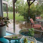 雨の日の過ごし方