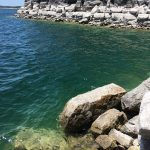 湖で裸足活動